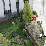 London - Garden & Red Telephone Box